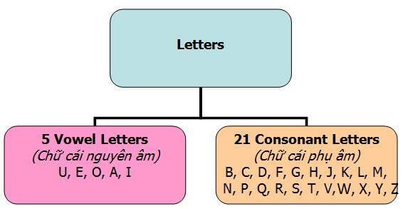 Phân loại chữ cái nguyên âm và phụ âm