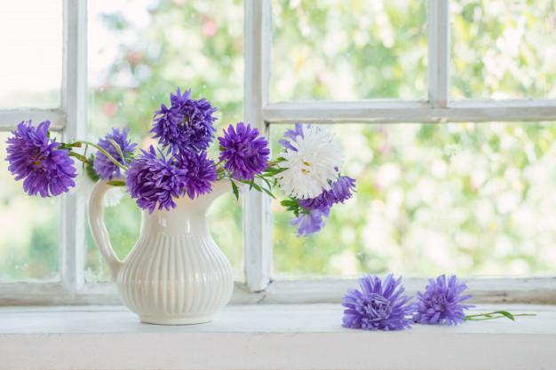 vase /veɪs/: lọ hoa
