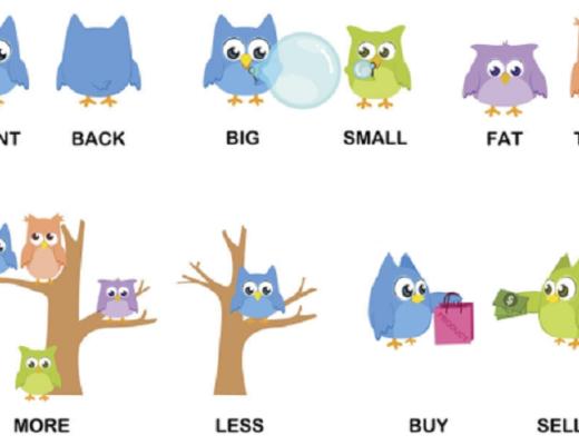 Tổng hợp các cặp từ trái nghĩa hay gặp nhất trong tiếng Anh
