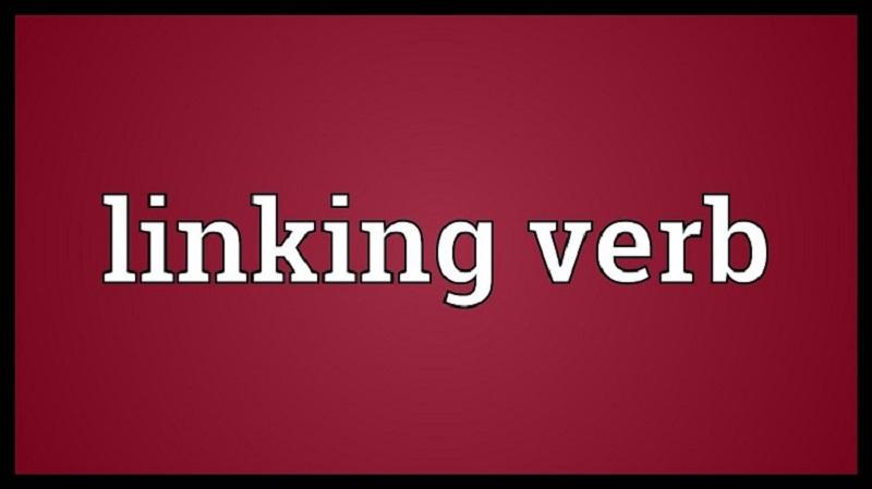 Linking verb là gì?