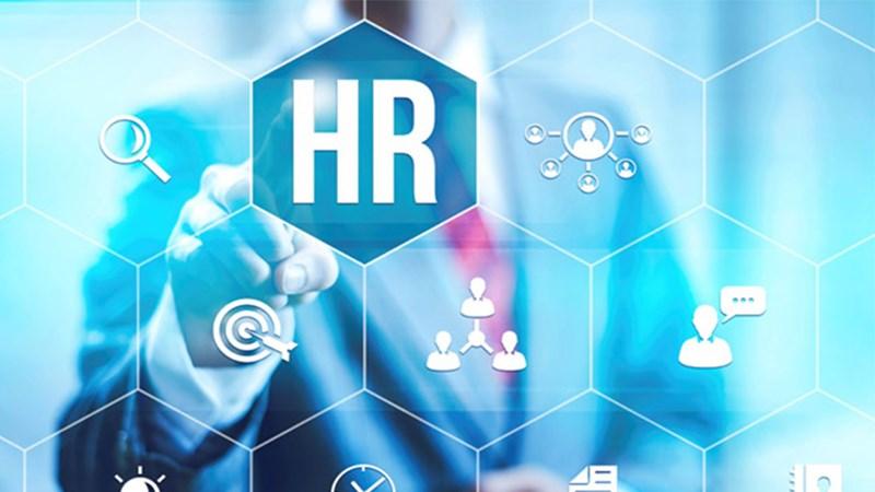 """Các vị trí """"cực hot"""" trong ngành HR"""